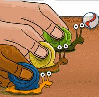 Snail Racing Timer
